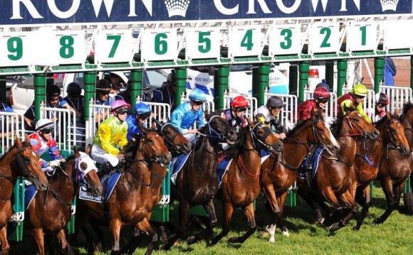 Sport : Horse Racing