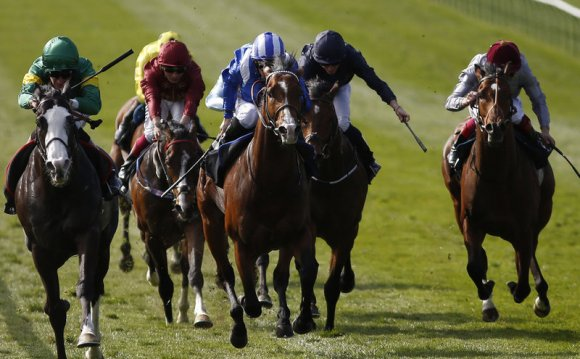 Marlborough: horse racing tips