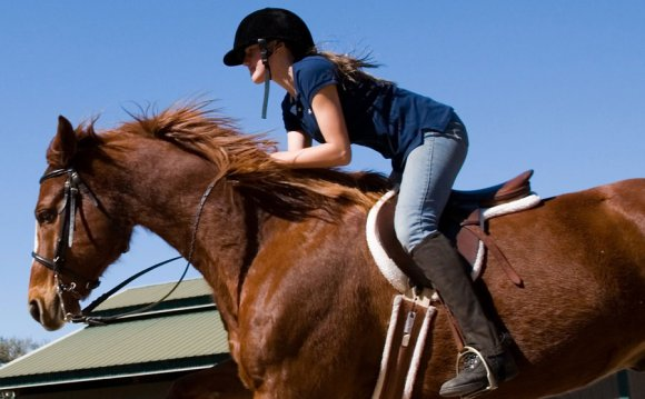 Horse Riding Lessons Orlando