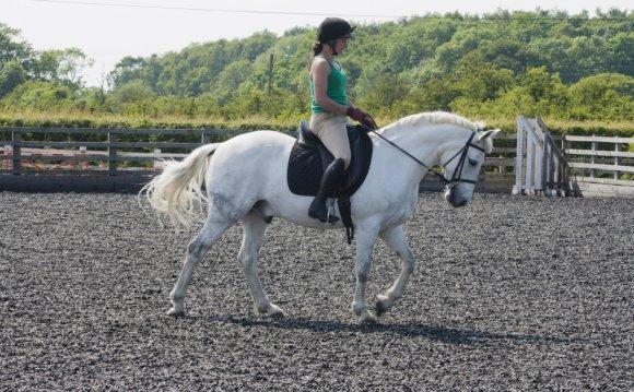 York-riding-school-instructors.jpg