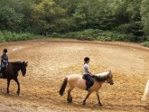 Horse riding Courses UK