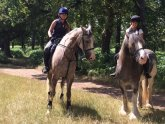 Richmond Park Horse riding