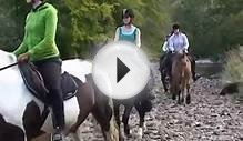 Horse Riding Argyll Adventure Inveraray Scotland