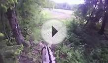 Horse riding in green forest / GoPro Helmet