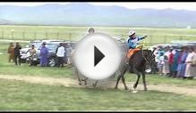 Naadam Horse Race (5 to 7 year old category)